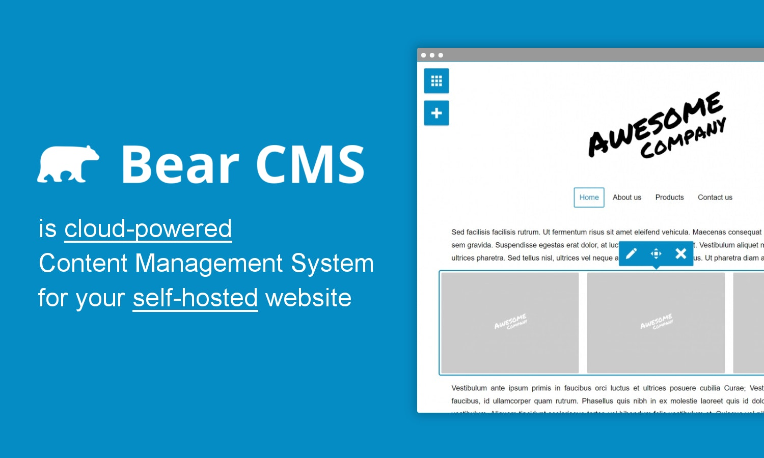 Bear CMS - CMS as a service for your self-hosted website