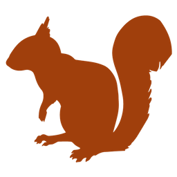 SquirrellyJS
