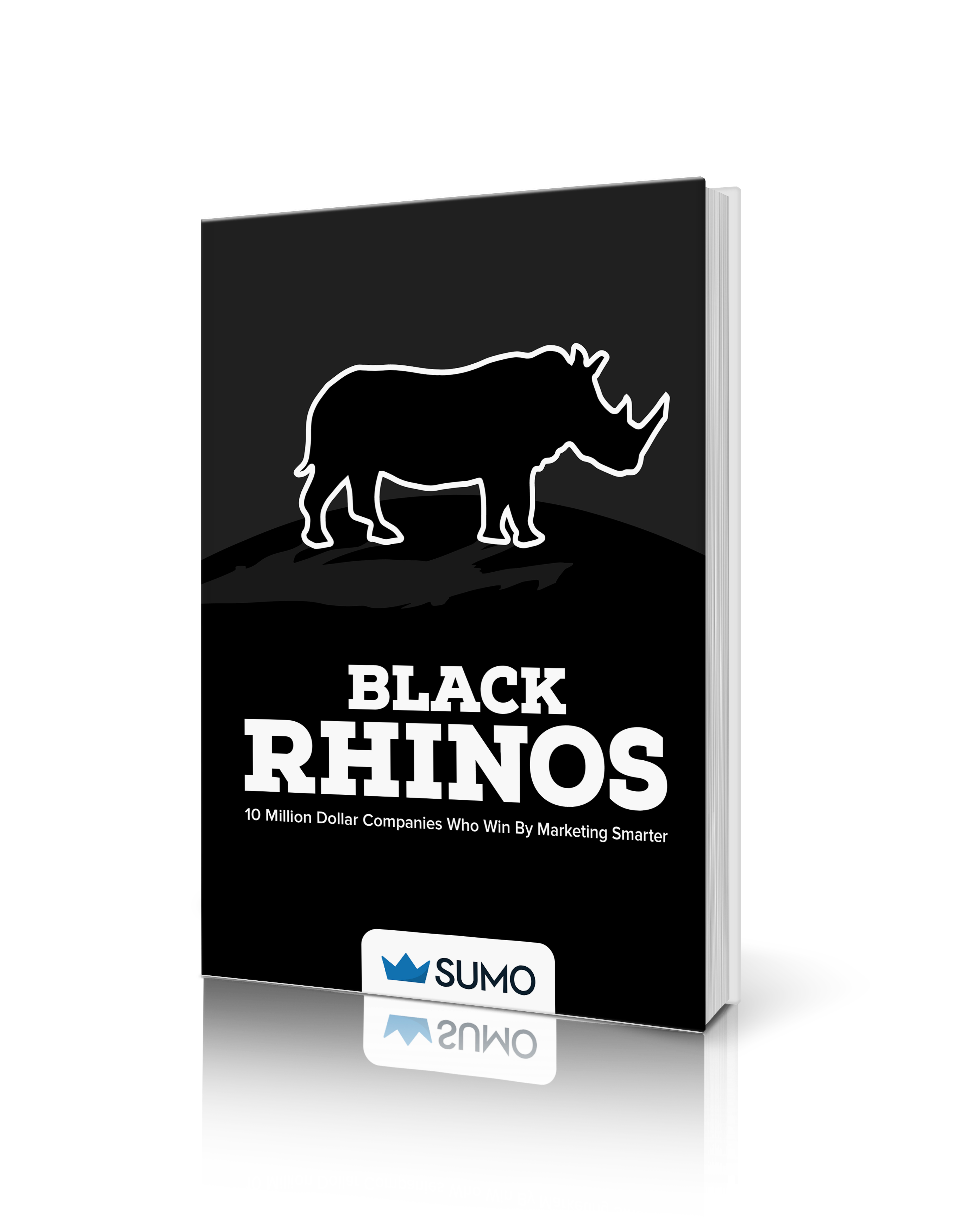 Black Rhinos Book