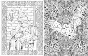 Harry Potter Coloring Book - Color Harry, quaffles, nargles ...