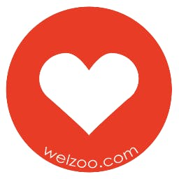 Welzoo Welzoo Makes A Daily Donation To Your Favorite Charity Product Hunt