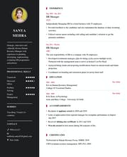 My Resume Format Make A Professional Resume In Five Minutes