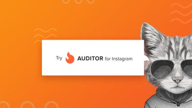 Auditor for Instagram - Analyze any Instagram account for