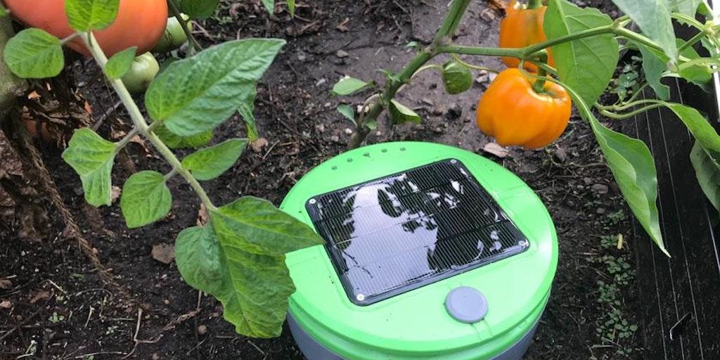Tertill - Garden weeding robot   Product Hunt