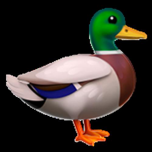 Deep Dive Duck