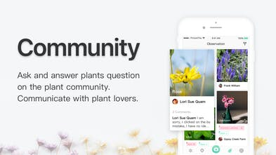 PictureThis - Instantly identify your plants | Product Hunt