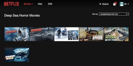 Netflix Secret Categories - A directory of all the