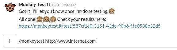 Monkey Test It