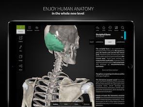 Anatomyka - Interactive 3D human anatomy | Product Hunt