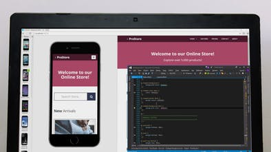 Blisk Browser - A Chromium-based browser for Web developers