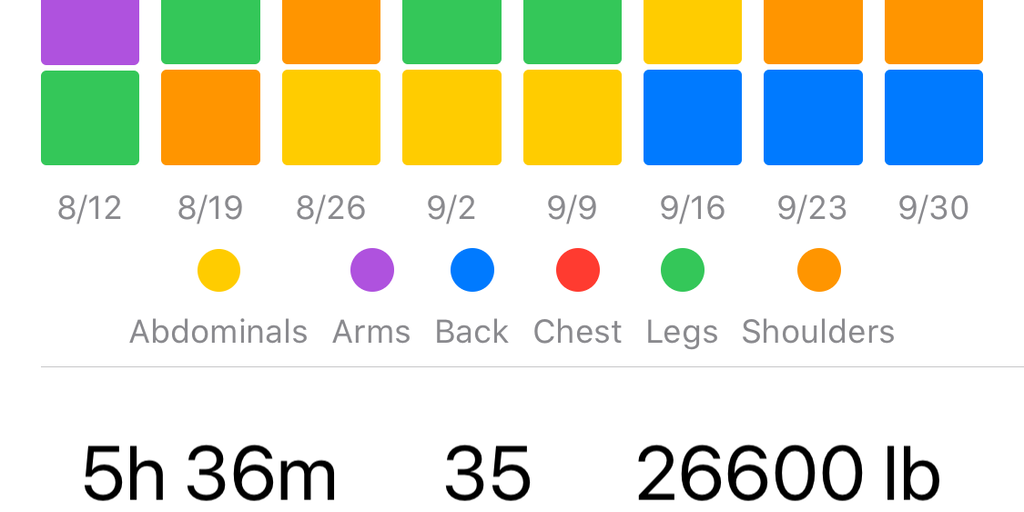 Iron - Simple gym workout tracker written in SwiftUI | Product Hunt